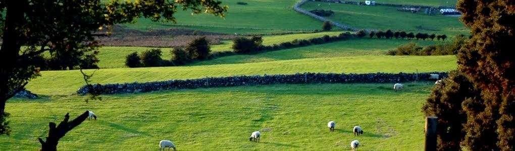 County Cavan
