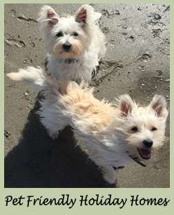 Holiday Homes Ireland, Pet Friendly Homes Ireland